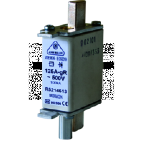 NH000 Fast Acting Fuse M000uf2/125A/500V